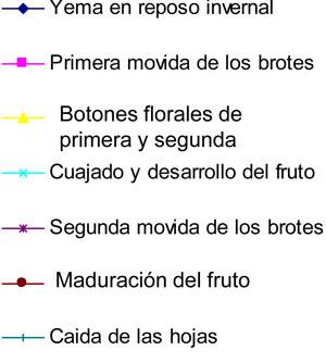 estado_arbol_indice